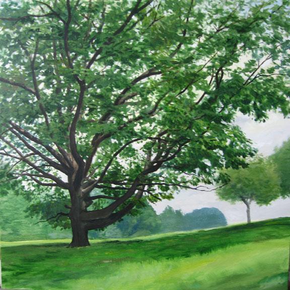 acrylic on canvas 30